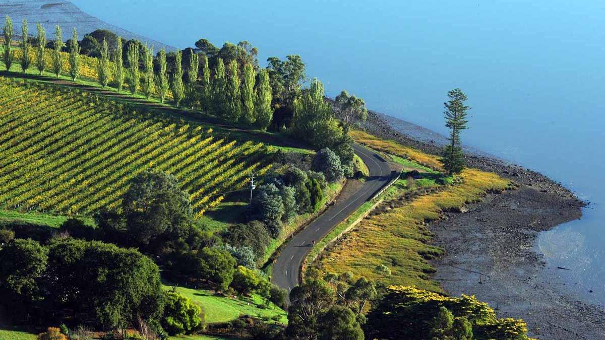 Tasmania bike tour