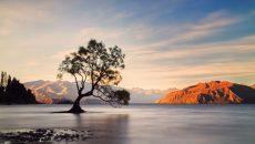 New Zealand Bike Tour South Island Escape Wanaka