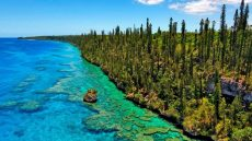 isle-of-pines-bike tour New Caledonia